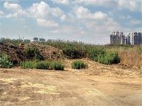 הגוש הגדול תל אביב / צלם: תמר מצפי